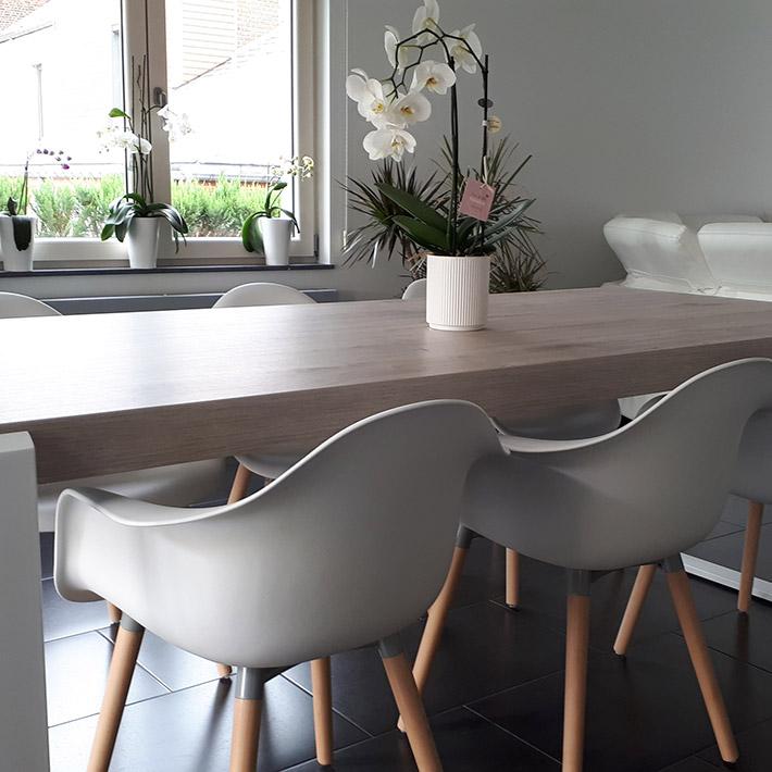 Design stoel OLIVIA - Alterego Design - Foto 1