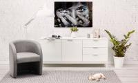 Décoration intérieure - Les idées déco Alterego Design - 69