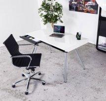 Een kamer/woonkamer inrichten met een bureau - Alterego Design