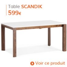 Decoration Scandinave - Table de salle à manger SCANDIK