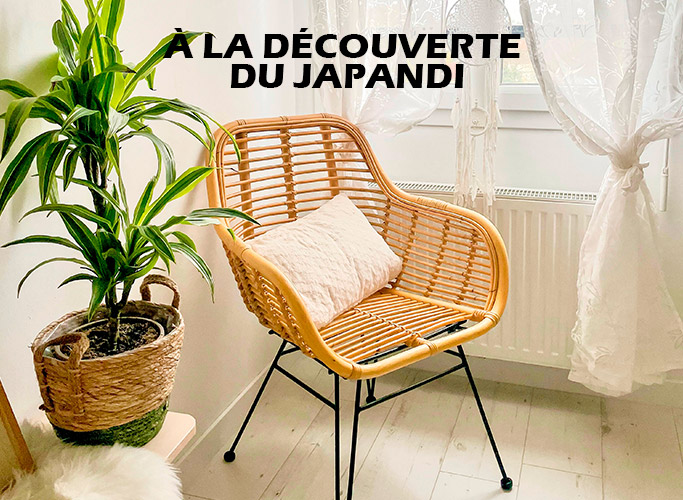 A la decouverte du Japandi - Photo 1 - Alterego Design