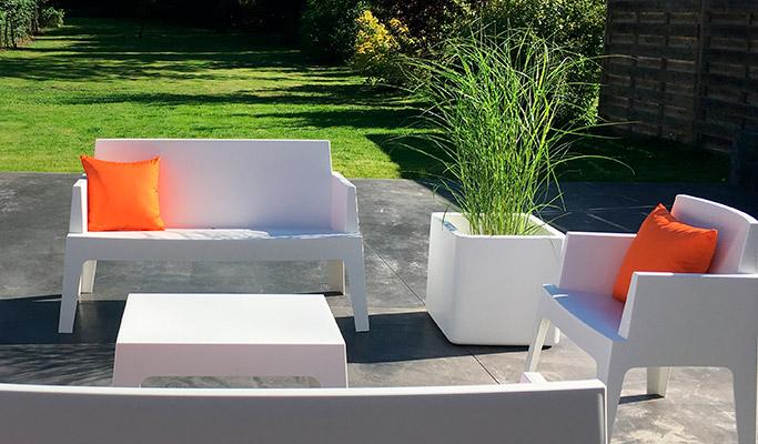 Les plantes sur la terrasses - 03