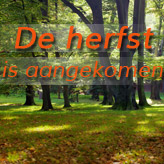 De herfst in uw interieur! - Alterego Design