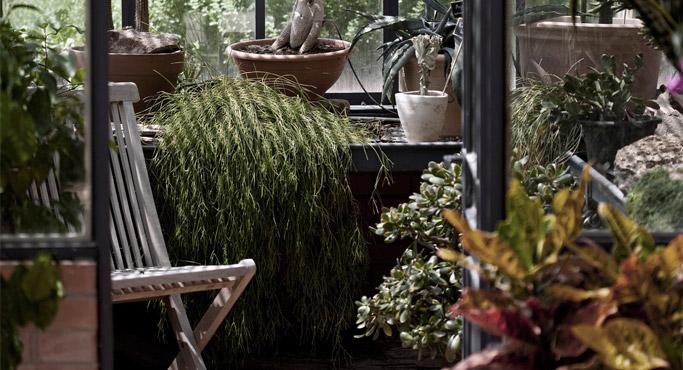 Amenager un jardin d'hiver - Alterego Design