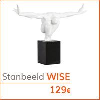 De woonkamer - Standbeeld WISE