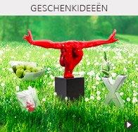 alle deco voorwerpen - Alterego Design